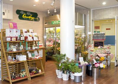生花店(オランダヤ)